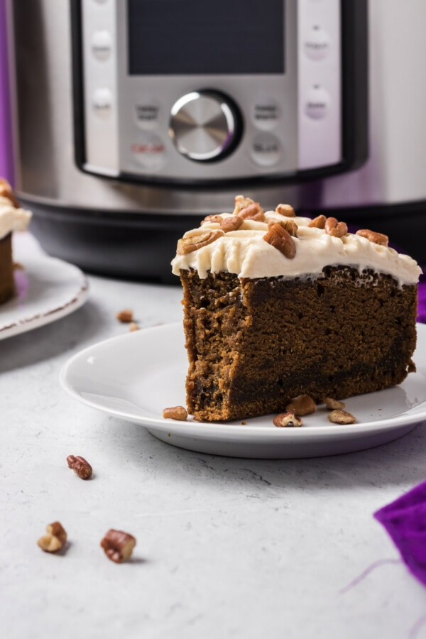 instant pot cake recipes from scratch