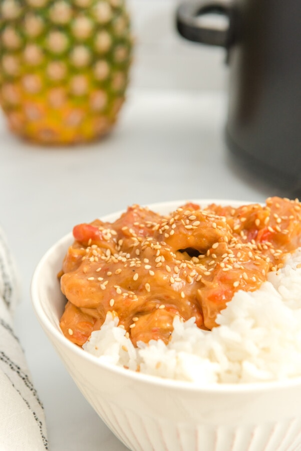bowl of rice and meat with slow cooker in the background