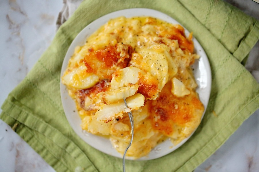 A closeup of some cheesy scalloped potatoes on a fork.